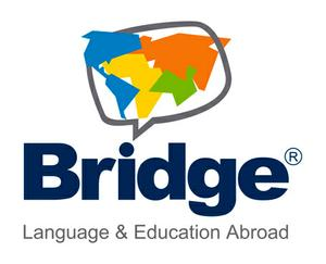 Bridge Education Group logo