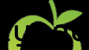 Lyngo LLC logo
