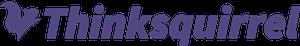 Thinksquirrel logo